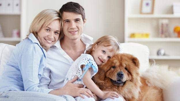 Wills & Trusts dog-young-family Direct Wills Bedford